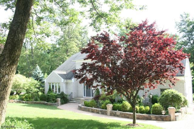 35 Swenson Circle, Berkeley Heights Twp., NJ 07922 (MLS #3398387) :: The Dekanski Home Selling Team