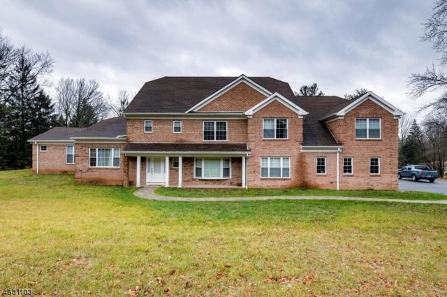 1390 Mallard Dr, Bridgewater Twp., NJ 08836 (MLS #3398672) :: The Dekanski Home Selling Team