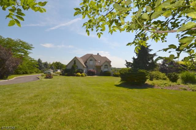 468 S Horizon Way, Branchburg Twp., NJ 08853 (MLS #3398715) :: Keller Williams MidTown Direct