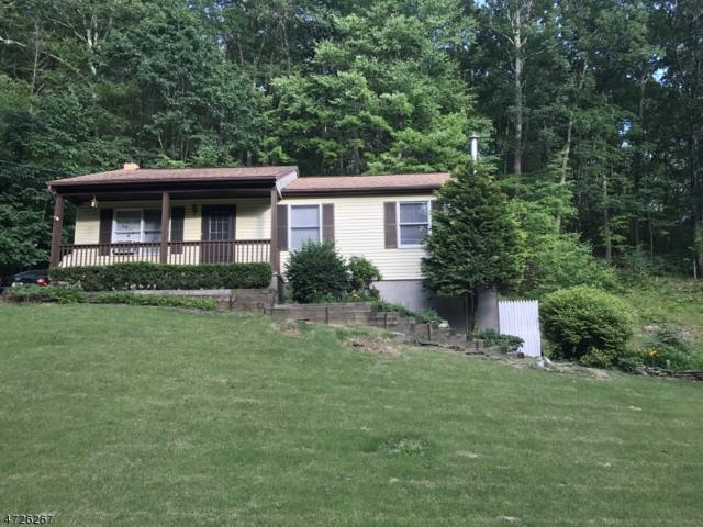31 New York Ave, Wantage Twp., NJ 07461 (MLS #3399335) :: The Dekanski Home Selling Team