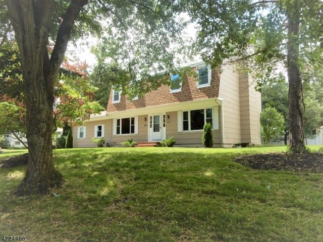 807 E. Baldwin St, Hackettstown Town, NJ 07840 (MLS #3399380) :: The Dekanski Home Selling Team