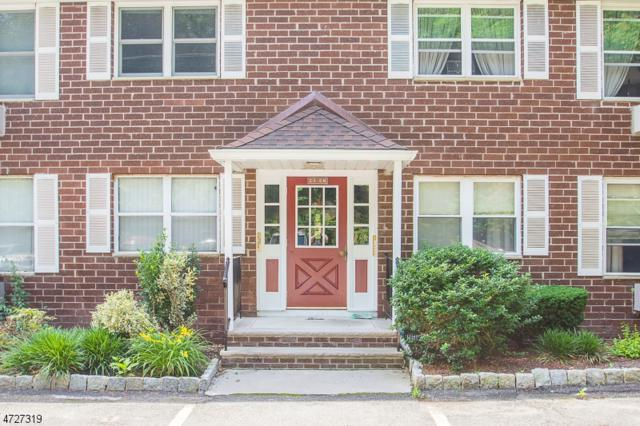 100 Pierson Miller Dr E11, Pompton Lakes Boro, NJ 07442 (MLS #3400276) :: The Dekanski Home Selling Team