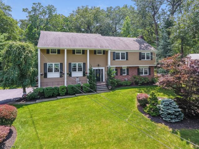 22 Green Hill Rd, Springfield Twp., NJ 07081 (MLS #3400644) :: SR Real Estate Group