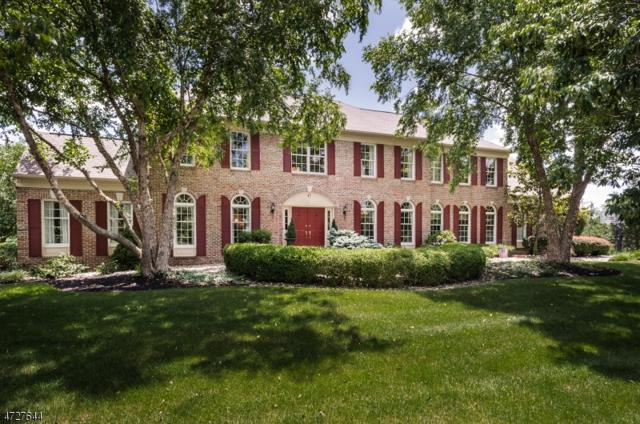 43 Doyle Ln, Montgomery Twp., NJ 08502 (MLS #3400664) :: The Dekanski Home Selling Team