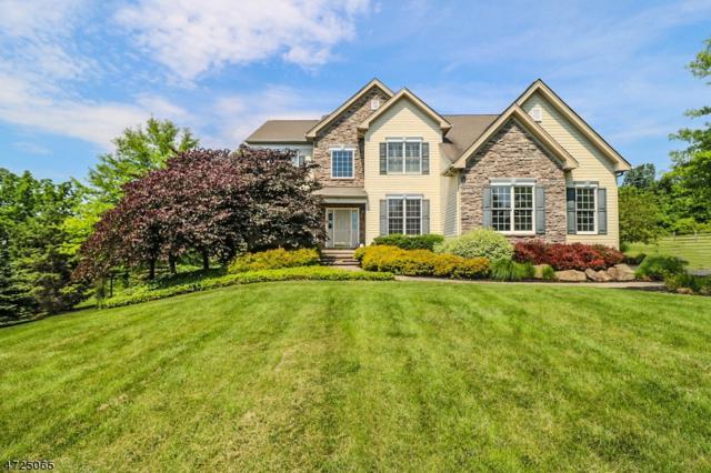 9 Perry Rd, Clinton Twp., NJ 08801 (MLS #3401698) :: The Dekanski Home Selling Team