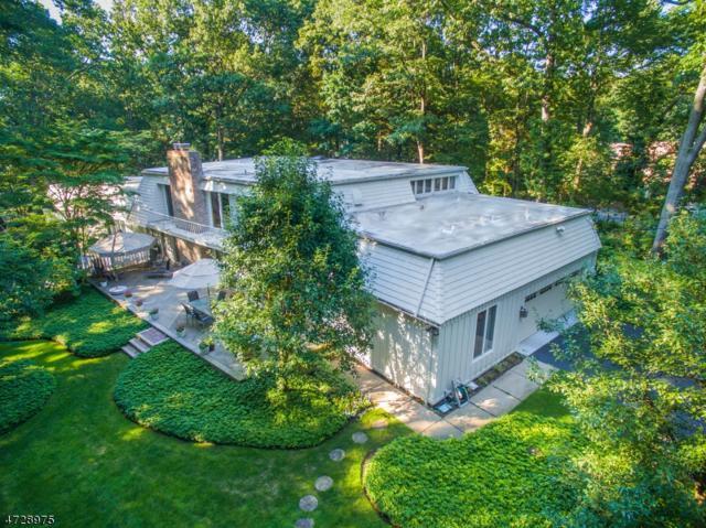 716 Dakota Trl, Franklin Lakes Boro, NJ 07417 (MLS #3401993) :: The Dekanski Home Selling Team