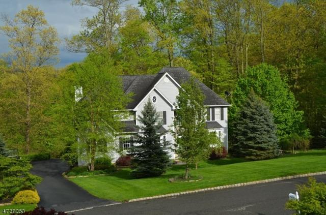 54 Indian Spring Rd, Mount Olive Twp., NJ 07828 (MLS #3402135) :: The Dekanski Home Selling Team