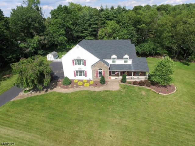 66 Rustic Trl, Raritan Twp., NJ 08822 (MLS #3403063) :: The Dekanski Home Selling Team