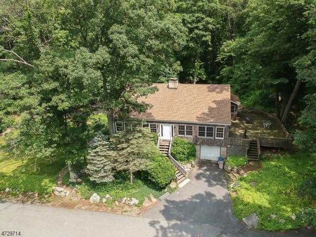 11 Hill Top Trl, Byram Twp., NJ 07821 (MLS #3403205) :: The Dekanski Home Selling Team