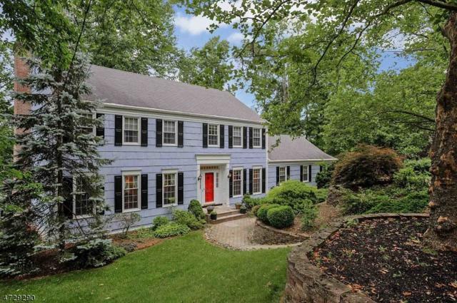 119 Ryder Way, New Providence Boro, NJ 07974 (MLS #3403309) :: The Dekanski Home Selling Team