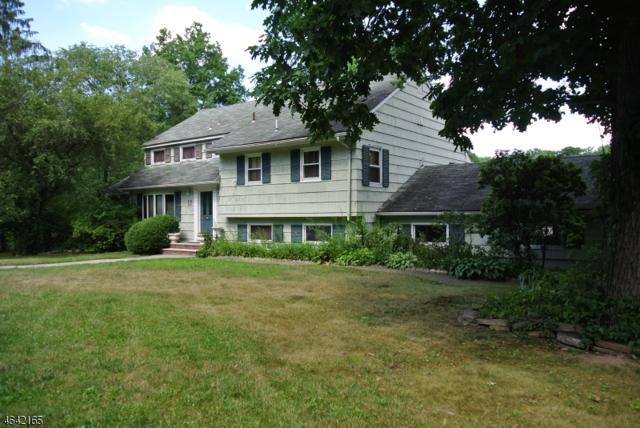 138 Lake Dr W, Wayne Twp., NJ 07470 (MLS #3403539) :: The Dekanski Home Selling Team