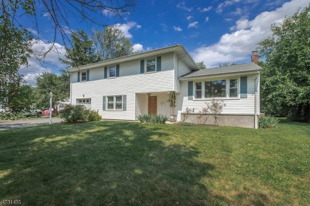 12 Happel Ct, Scotch Plains Twp., NJ 07076 (#3404208) :: Daunno Realty Services, LLC