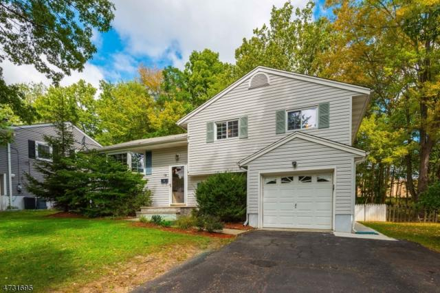 19 Singac Ct, Parsippany-Troy Hills Twp., NJ 07054 (MLS #3404377) :: The Dekanski Home Selling Team