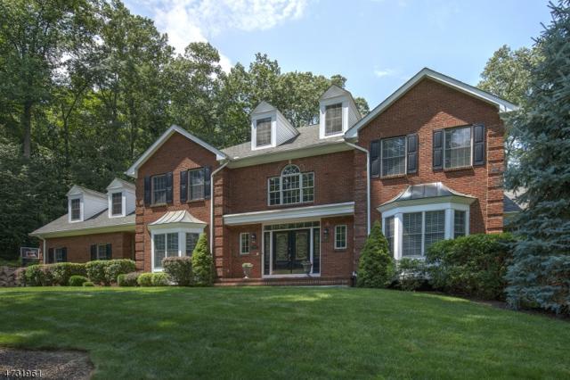 1 Logan Ct, Mendham Twp., NJ 07945 (MLS #3404612) :: The Dekanski Home Selling Team