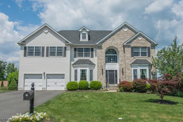 2 Magestro Ct, Mount Olive Twp., NJ 07828 (MLS #3404684) :: The Dekanski Home Selling Team