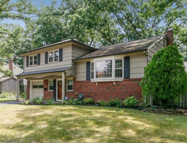 68 Shady Ln, Fanwood Boro, NJ 07023 (MLS #3404699) :: The Dekanski Home Selling Team