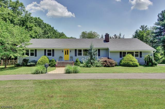 49 Haas Rd, Bernards Twp., NJ 07920 (MLS #3405372) :: The Dekanski Home Selling Team