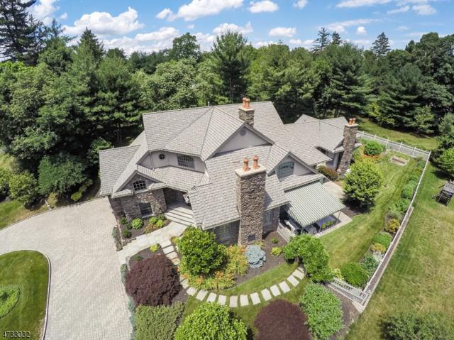 8 Easley Ter, Morris Twp., NJ 07960 (MLS #3405572) :: The Dekanski Home Selling Team
