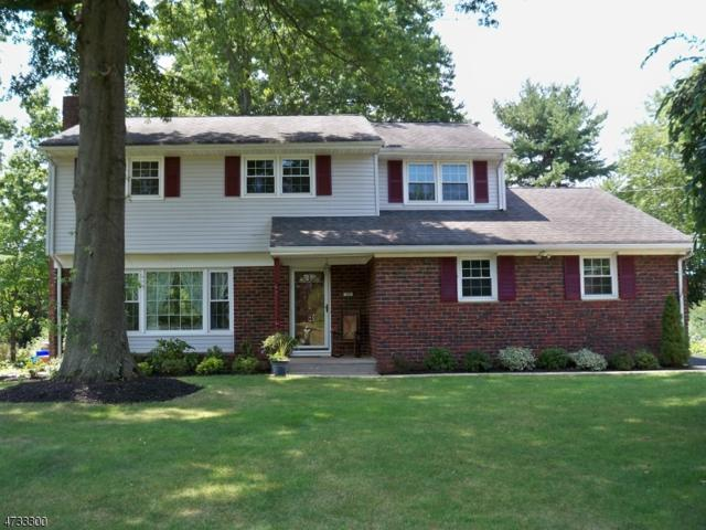 29 Buffa Dr, Franklin Twp., NJ 08873 (MLS #3405892) :: The Dekanski Home Selling Team