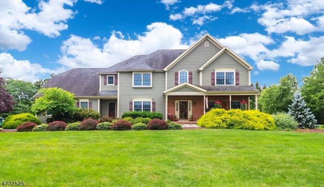 17 Huntington Dr, Clinton Twp., NJ 08801 (MLS #3406871) :: The Dekanski Home Selling Team