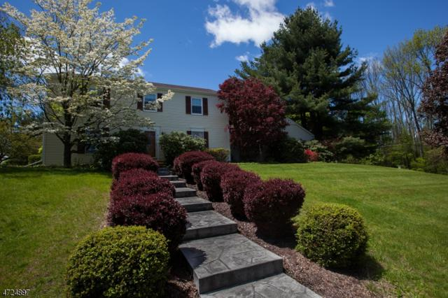 67 Russling Rd, Independence Twp., NJ 07840 (MLS #3407391) :: The Dekanski Home Selling Team