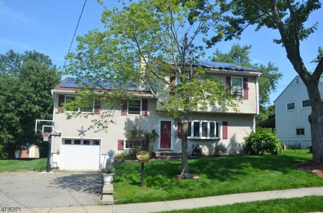 79 Richard St, Rockaway Twp., NJ 07801 (MLS #3407747) :: The Dekanski Home Selling Team