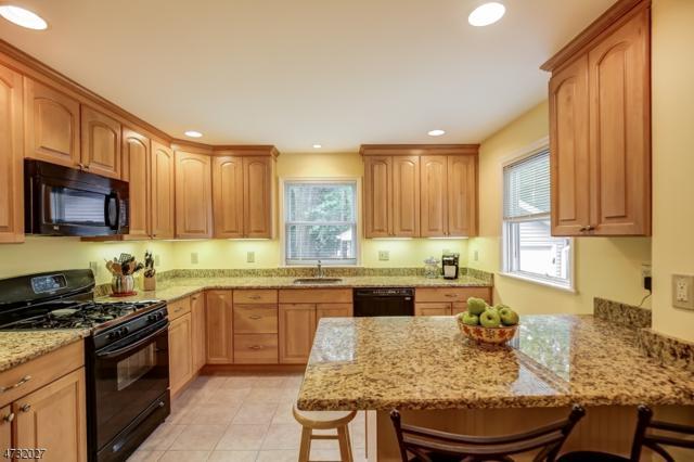 232 Ward Pl, South Orange Village Twp., NJ 07079 (MLS #3408091) :: The Sue Adler Team