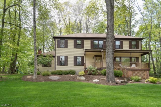 4 Blue Fern Ln, Randolph Twp., NJ 07869 (MLS #3408338) :: The Dekanski Home Selling Team