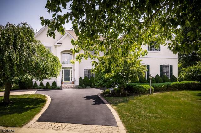 1 Pecan Valley Ct, Montgomery Twp., NJ 08558 (MLS #3409055) :: The Dekanski Home Selling Team