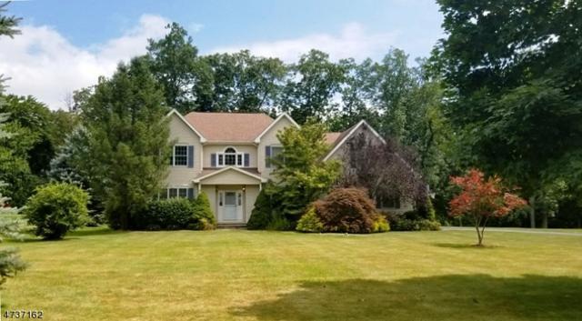 5 Hemlock Dr, Mount Olive Twp., NJ 07828 (MLS #3409448) :: The Dekanski Home Selling Team
