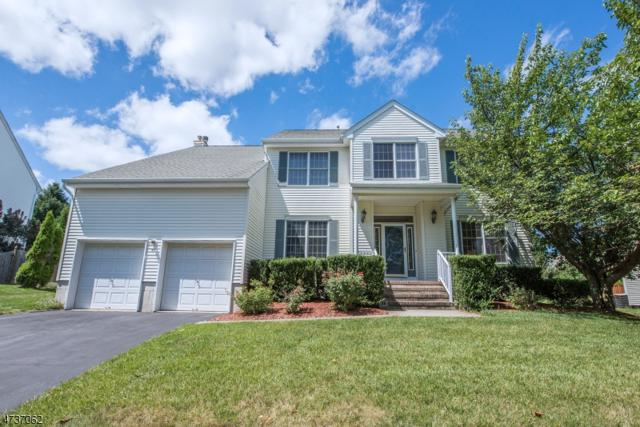 45 Lazarus Drive, Roxbury Twp., NJ 07852 (MLS #3409462) :: The Dekanski Home Selling Team