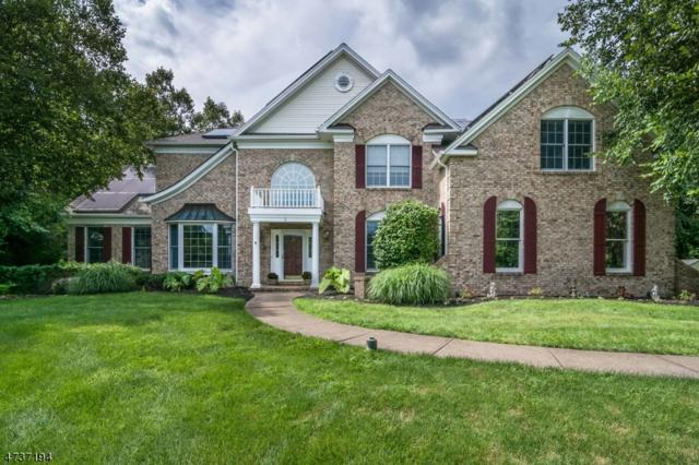 5 Vista Dr, Mount Olive Twp., NJ 07836 (MLS #3409704) :: The Dekanski Home Selling Team