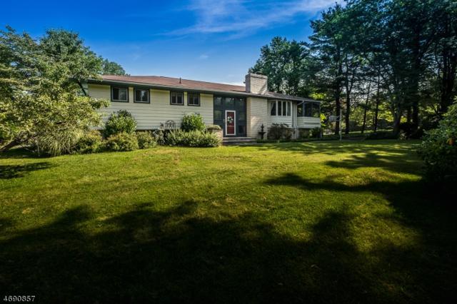 1 Manor Dr, Andover Twp., NJ 07860 (MLS #3409775) :: The Dekanski Home Selling Team