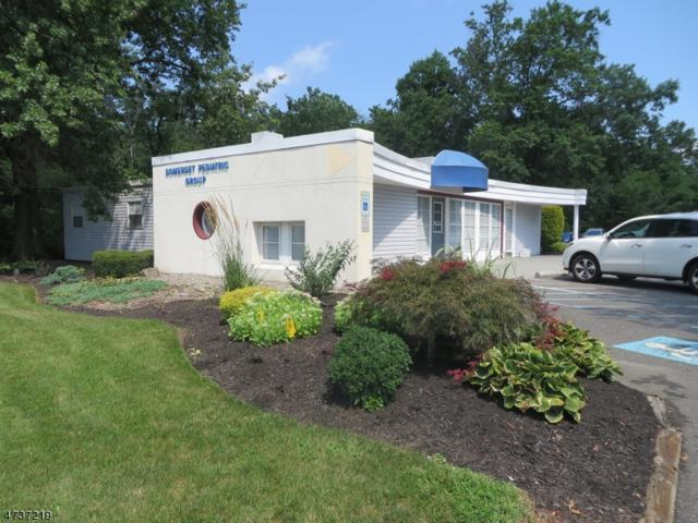 155 Union Ave, Bridgewater Twp., NJ 08807 (MLS #3409854) :: The Dekanski Home Selling Team