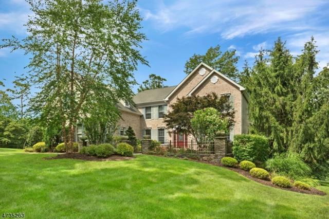4 Spring Lake Dr, Chester Twp., NJ 07931 (MLS #3410115) :: The Dekanski Home Selling Team