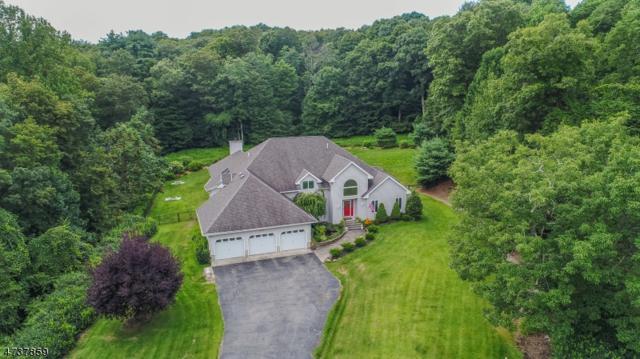 11 Stonehedge Way, West Milford Twp., NJ 07480 (MLS #3410127) :: The Dekanski Home Selling Team