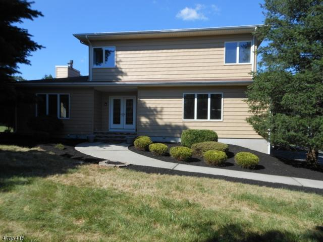 194 Harlingen Rd, Montgomery Twp., NJ 08502 (MLS #3410267) :: The Dekanski Home Selling Team