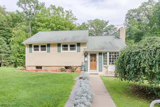 10 White Birch Trl, Rockaway Twp., NJ 07866 (MLS #3410331) :: The Dekanski Home Selling Team