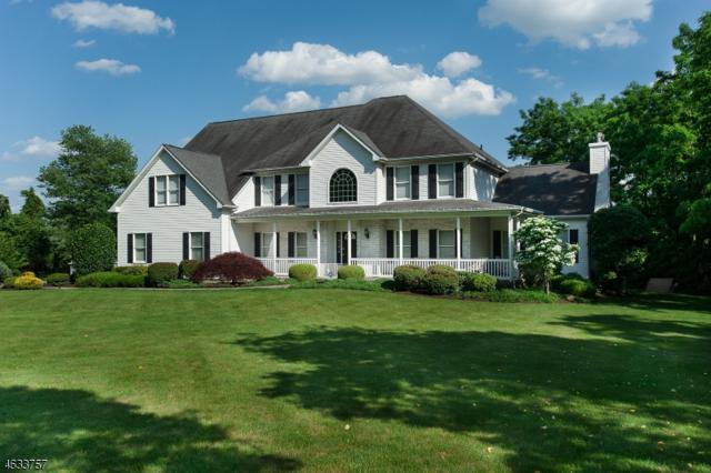 6 Mansfield Rd, Franklin Twp., NJ 08540 (MLS #3410447) :: The Dekanski Home Selling Team