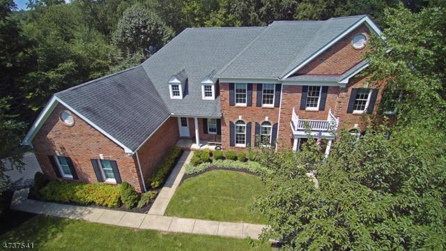 6 Morgan Dr, Sparta Twp., NJ 07871 (MLS #3410539) :: The Dekanski Home Selling Team