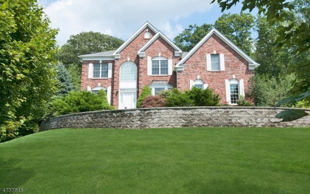 14 Greenbriar Ct, Mount Olive Twp., NJ 07836 (MLS #3410573) :: The Dekanski Home Selling Team