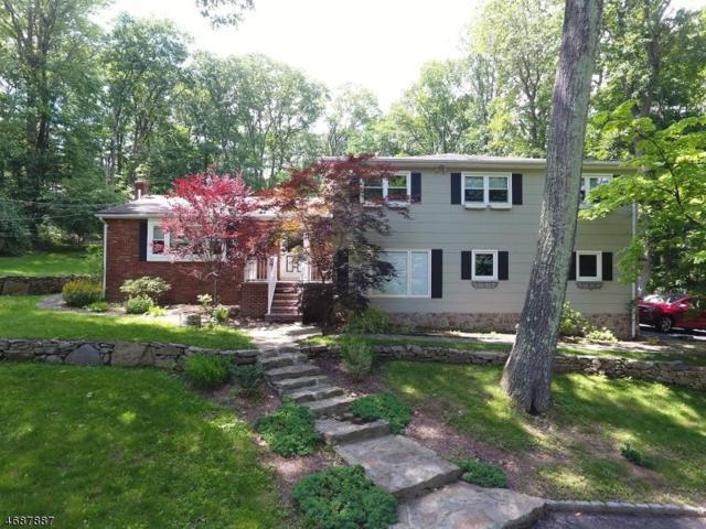 27 Zeek Rd, Denville Twp., NJ 07950 (MLS #3410806) :: The Dekanski Home Selling Team