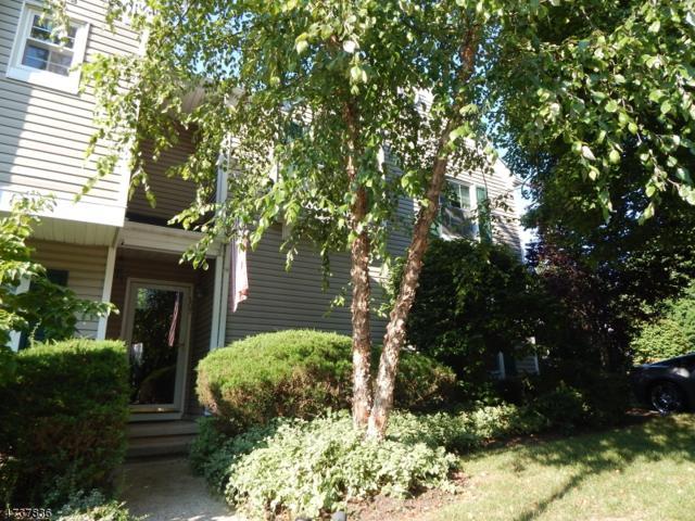 207 Reed Ln, Bedminster Twp., NJ 07921 (MLS #3410839) :: The Dekanski Home Selling Team