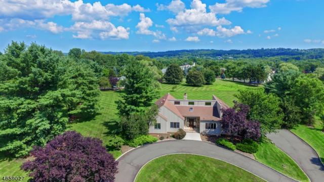 14 Springdale Ln, Warren Twp., NJ 07059 (MLS #3410963) :: The Dekanski Home Selling Team
