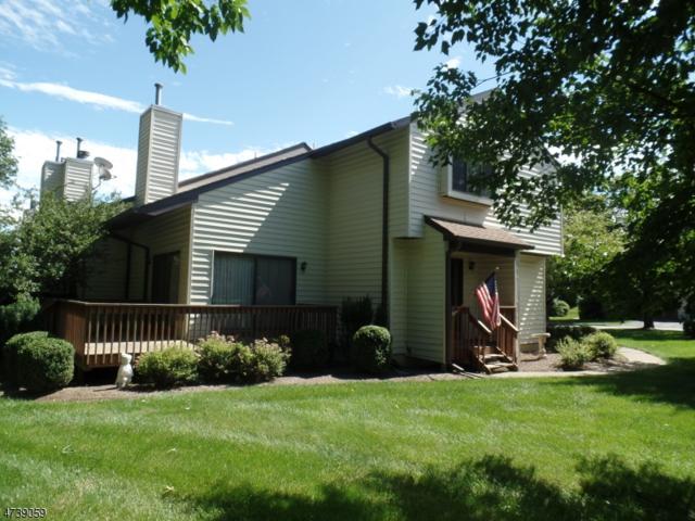 2 Eagle Dr, Hampton Twp., NJ 07860 (MLS #3411329) :: The Dekanski Home Selling Team