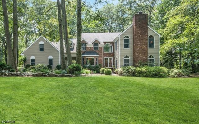 4 Elshaer Ct, Randolph Twp., NJ 07869 (MLS #3411360) :: The Dekanski Home Selling Team