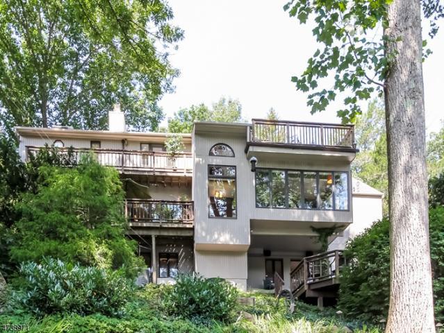 28 Lake Trl W, Harding Twp., NJ 07960 (MLS #3412173) :: The Dekanski Home Selling Team