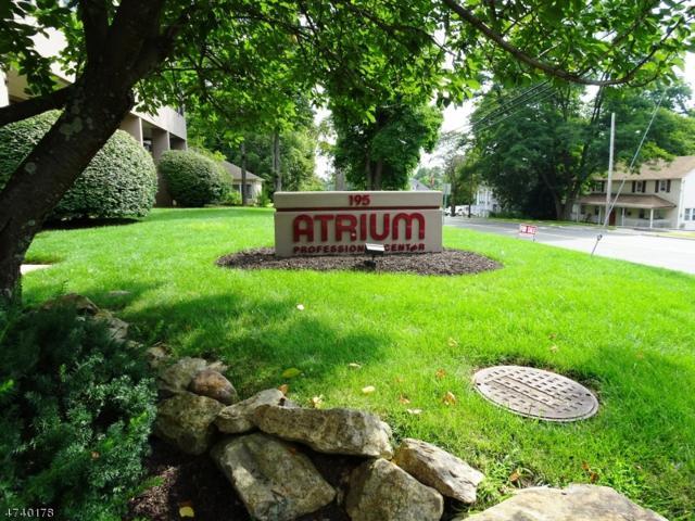 195 Route 46, Mine Hill Twp., NJ 07803 (MLS #3412267) :: The Dekanski Home Selling Team