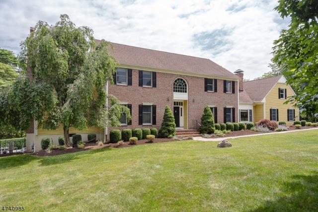 10 Ryan Ct, Chester Twp., NJ 07930 (MLS #3413152) :: The Dekanski Home Selling Team
