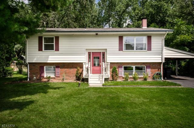 15 Mill St, Stockton Boro, NJ 08559 (MLS #3413360) :: The Dekanski Home Selling Team
